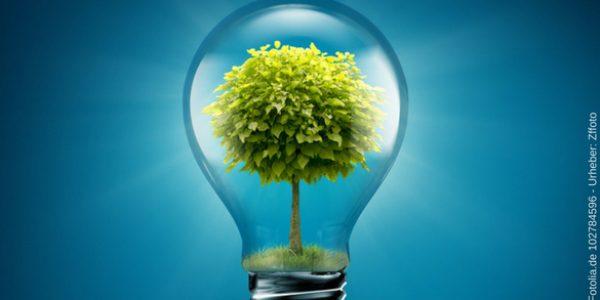Die Dau GmbH setzt auf eine Einzigartige Abwassertechnik, bei der grüne Energie erzeugt wird.